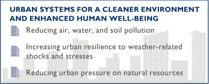 Urban systems for a cleaner environment and enhanced human well being graphic