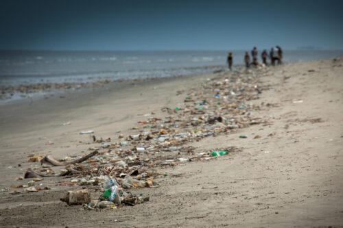 beach with litter